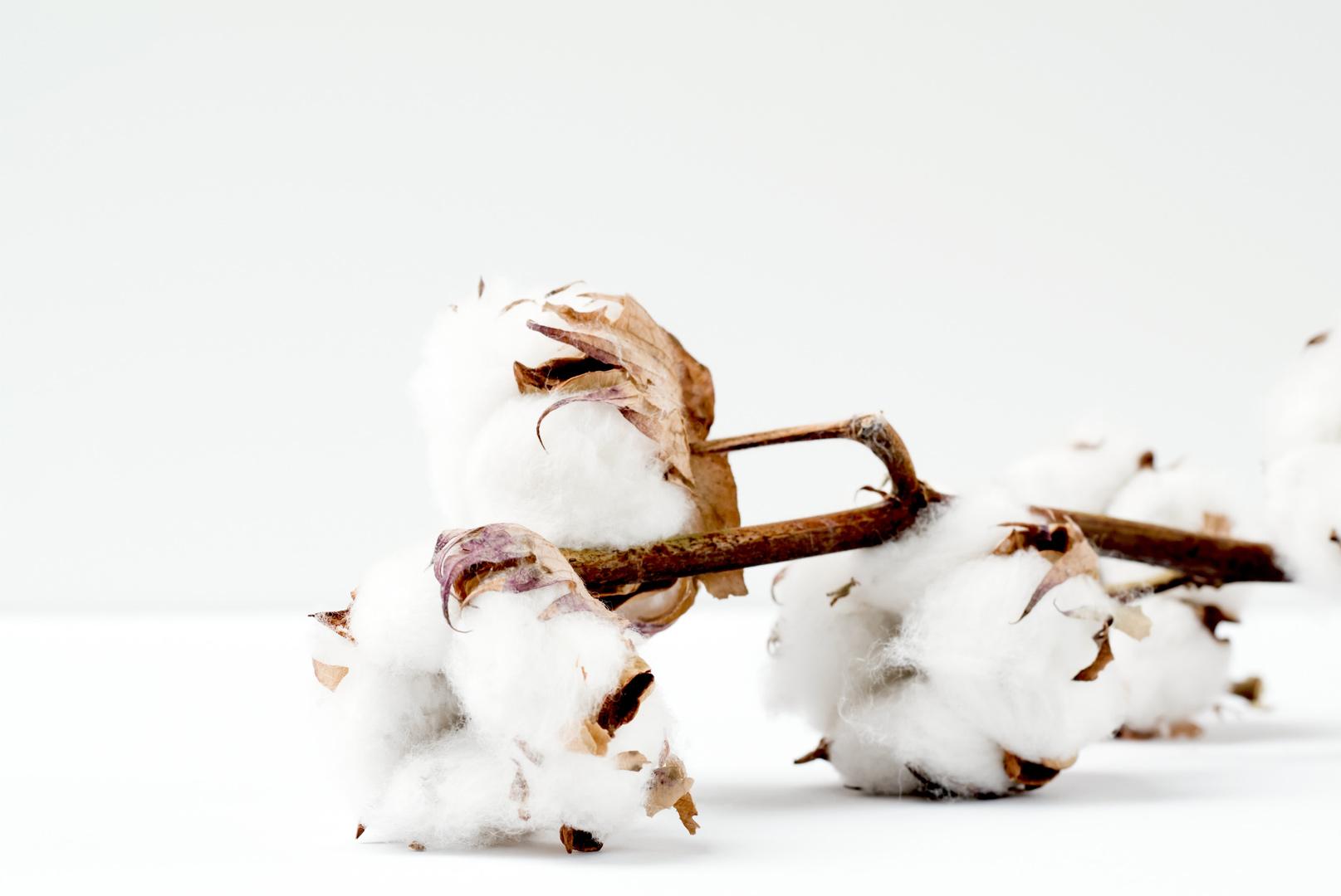 Baumwolle ist ein gutes Material